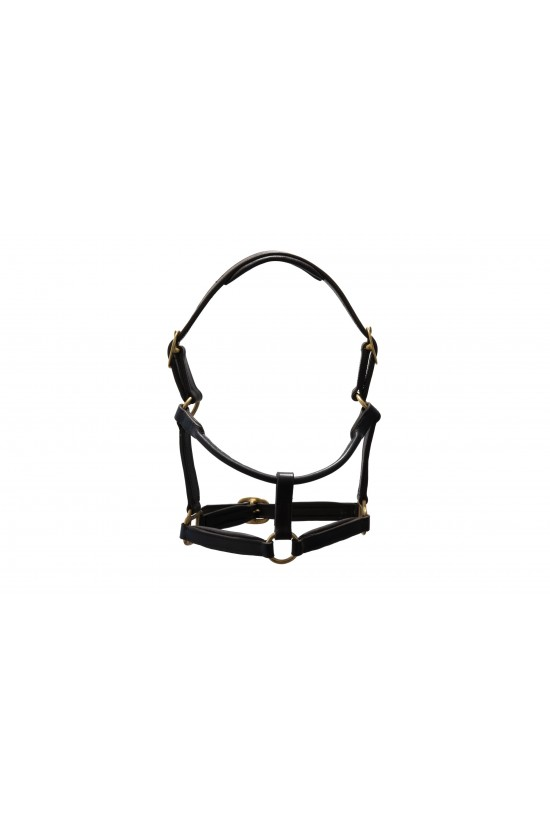 EB Offer Front Fastening Headcollar